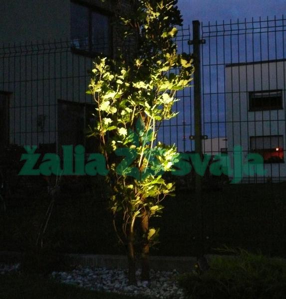 led-lauko-sodo-augalu-apsvietimas-200