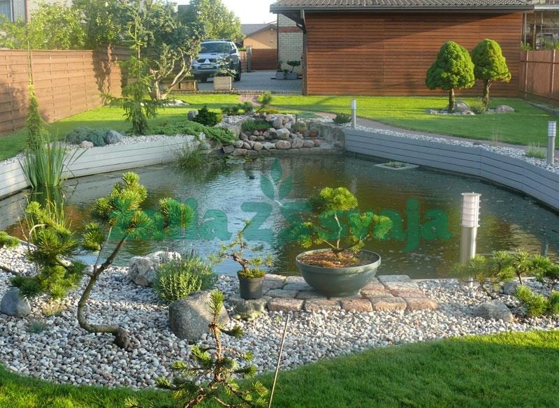dekoratyviniai-baseinai-tvenkiniai-101